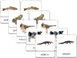 Vertebrates 3-Part Zoology Starter Set - Maitri Learning  - 1