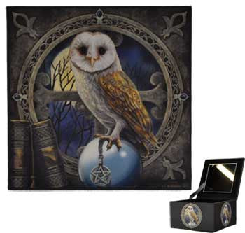 Lisa Parker Owl Mirror box