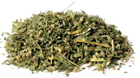 Catnip cut 1oz (Nepeta cataria)
