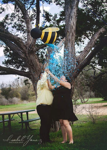 what will baby bee gender reveal ideas