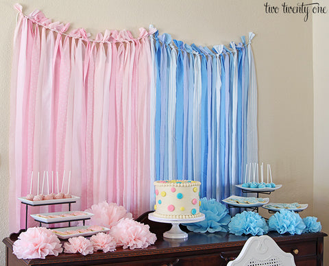 team boy or team girl gender reveal party decorations