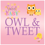Sweet Baby Owl Girl Baby Shower Theme