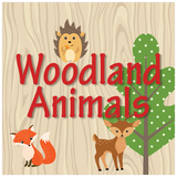 Woodland Animals Baby Shower Theme