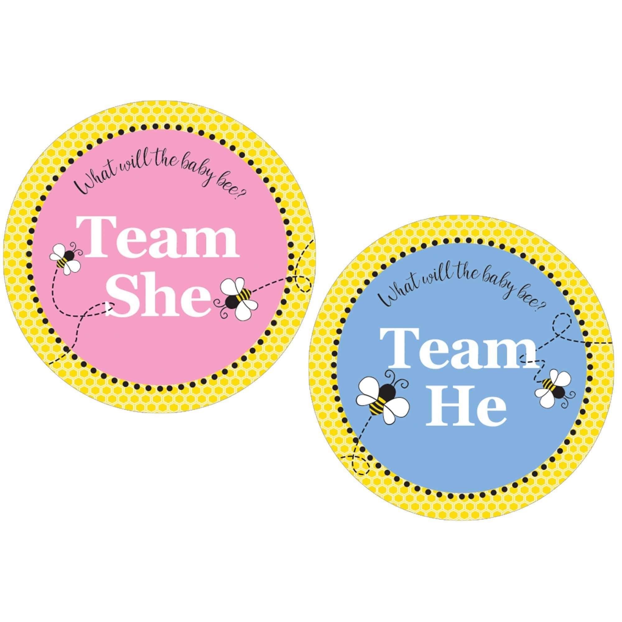Baby Gender Reveal Team Boy or Girl Stickers 40 Labels Lashes or Staches