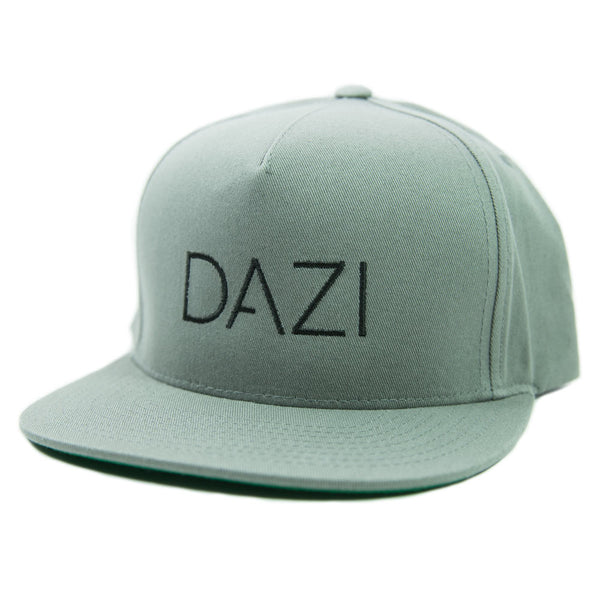 DAZI Embroidered Snapback Hat - Gray