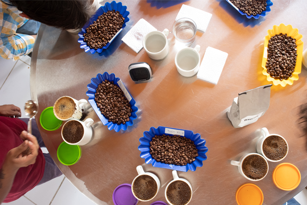 Coffee Education Series - Cupping for Beginners | Devoción