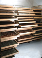Pappardelle's Short Cut Drying Racks