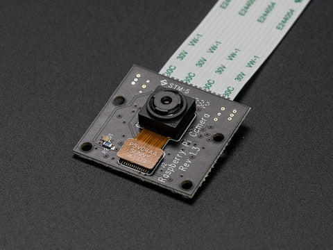 Buy Australia Raspberry Pi NoIR Camera Board - Infrared-sensitive Camera , PAKR_Module - Pakronics, Pakronics Melbourne  in Australia - 1