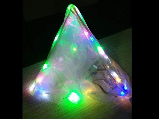 Buy Australia Fun Light , Awesome Projects - Seeed Studio, Pakronics Melbourne  in Australia - 1