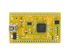 Buy Australia FT2232H USB 2.0 Hi-Speed breakout board , UART - Seeed Studio, Pakronics Melbourne  in Australia - 2