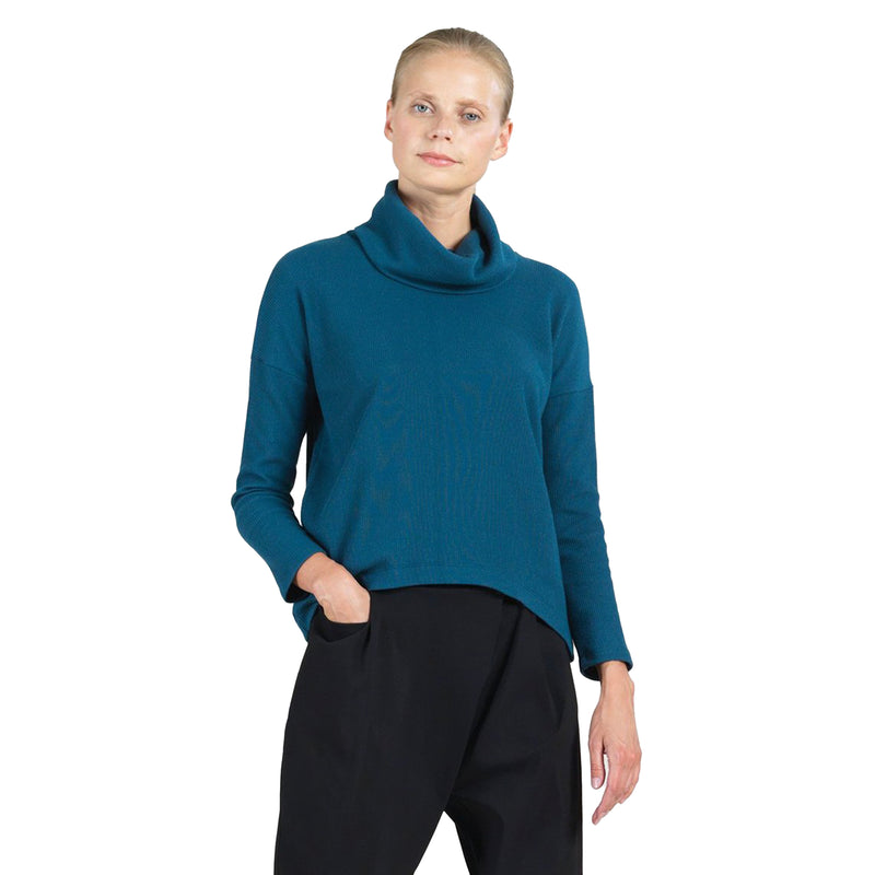 Clara Sunwoo Ribbed Knit Cowl Neck Sweater in Blue - T92W3