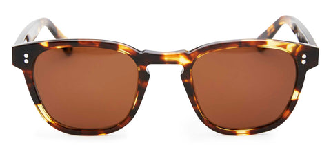 Pacifico Optical Yacht Master Cola with Polarised Brown Lens