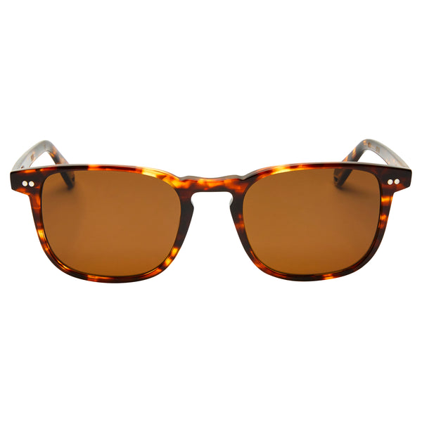 Blair - Cola with POLARISED Brown Lens