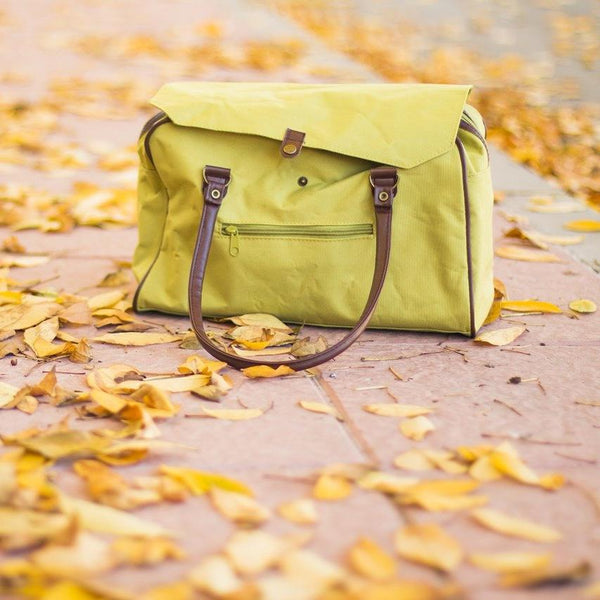 Pale green handbag sitting amongst Autumn leaves