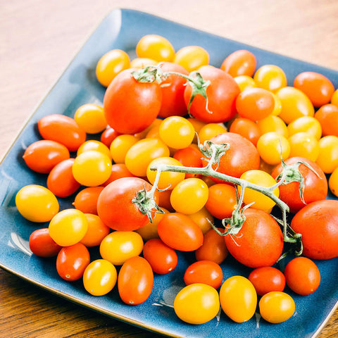 Cherry tomatoes on a blue plate