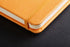 products/RHODIA-Boutique-Webnotebook-Carnet-orange-couverture-rigide-en-simili-cuir-192P-papier90gPEFC-elastique.det2.jpg