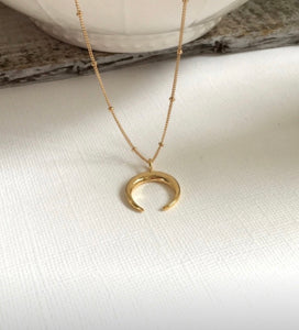 Summer Moon Double Horn Necklace