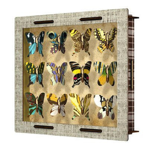 MIHO Butterfly Collection Display Cabinet [Baby Product]