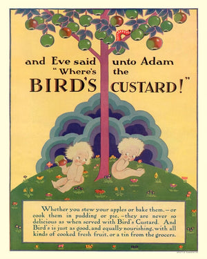Vintage Metal Sign - Retro Advertising - Birds Custard, Adam & Eve