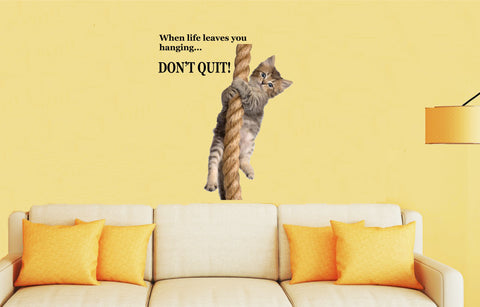 CAT HANGING ONTO ROPE - DONT QUIT