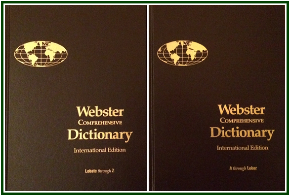 Webster Comprehensive Dictionary International Edition