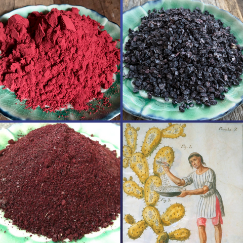 Cochineal Extract and Bugs