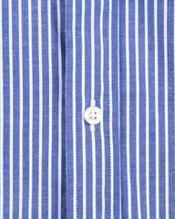 Blue with White Stripes Oxford- Small Batch #30