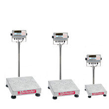 Defender™ 7000 Washdown Bench Scales - Low Cost Scales  - 1