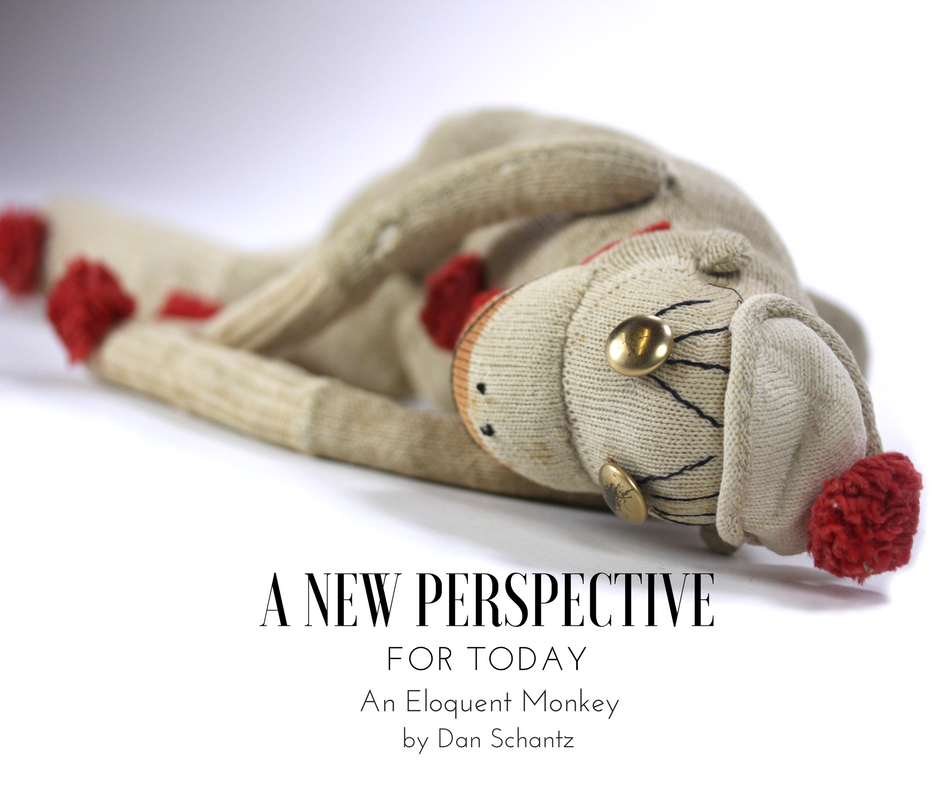 A New Perspective for Today: An Eloquent Monkey by Dan Schantz