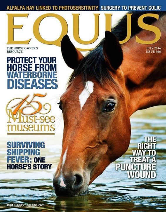 Best Price for Equus Magazine Subscription