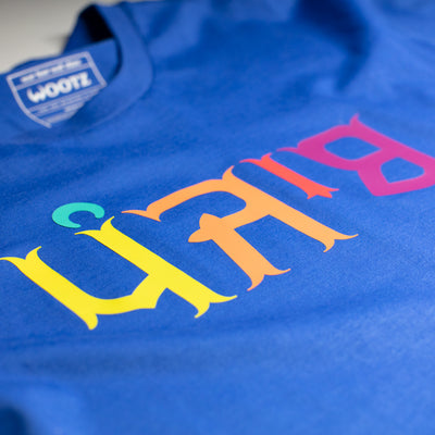 Punjab Multicolour Text T-Shirt