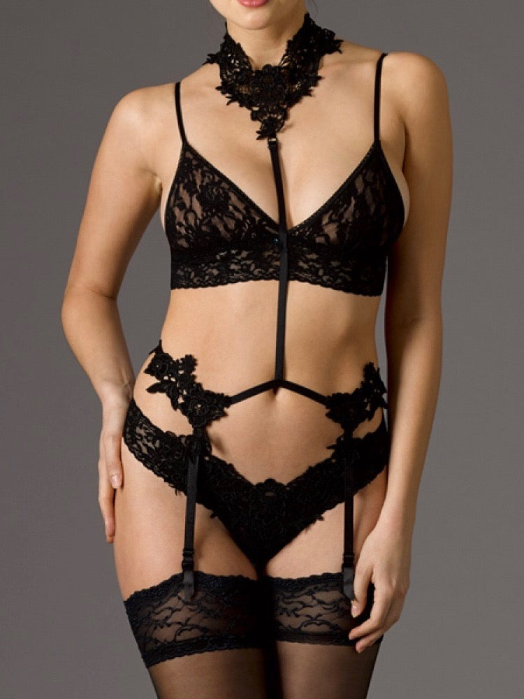Lingerie Collection- Hanky Panky Strappy Lace Lingerie