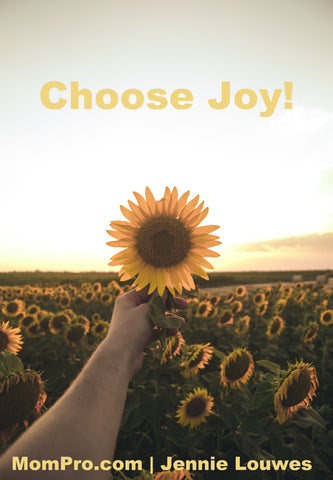 Choose Joy - Word Overlay by Jennie Louwes - Image Provided by Milan Popovic - Freely Photos