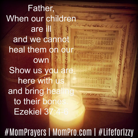 Ezekiel 37:4-6 | Image Provided by Molly Burke Mattocks | Word Overlay and Prayer by Jennie Louwes