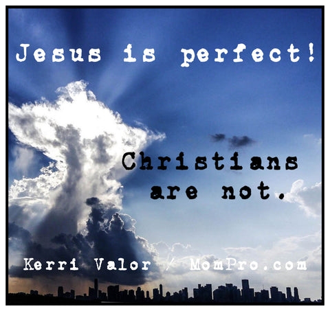 The Perfect Jesus - Image by webtop1 via Pixabay - Word Overlay by Jennie Louwes