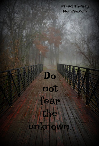 Do Not Fear the Unknown - Word Overlay by Jennie Louwes