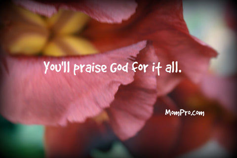 You'll Praise Him | Word-Overlay by Jennie Louwes