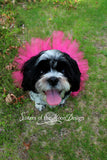 "Super cute Shocking Pink 6"" dog or pet tutu"