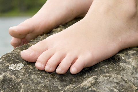 Is the little toe a vestigial structure? Why or why not?