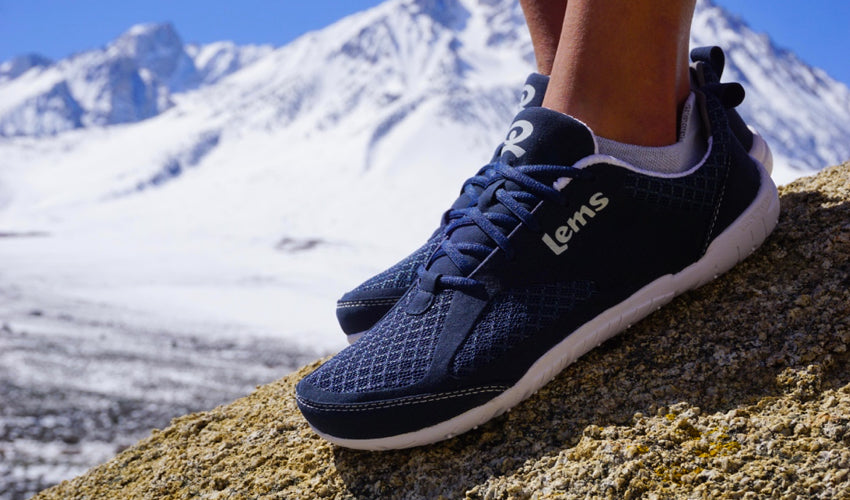 A pair of Lems Primal 2 Eclipse shoes with snowy mountains in the background