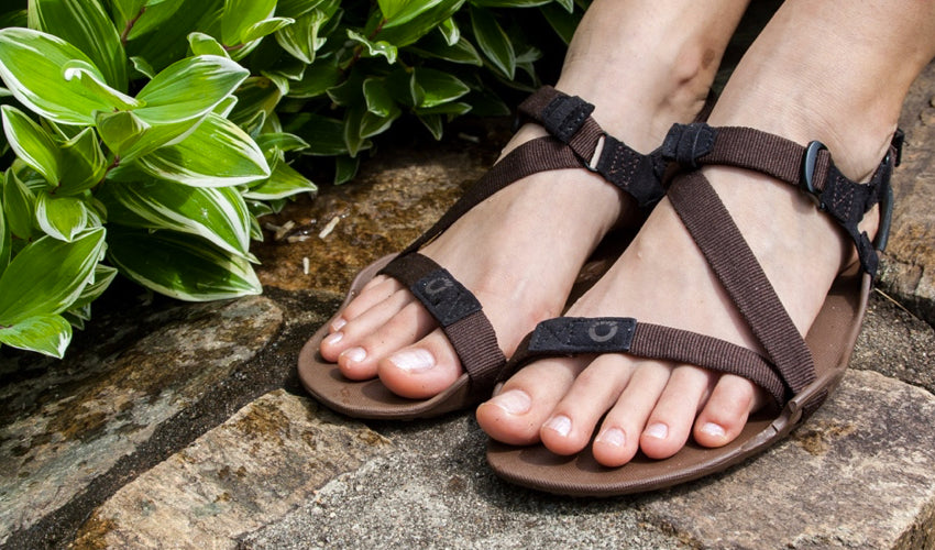 Healthy feet wearing a pair of Xero Z-Trek sports sandals with lovely foliage nearby