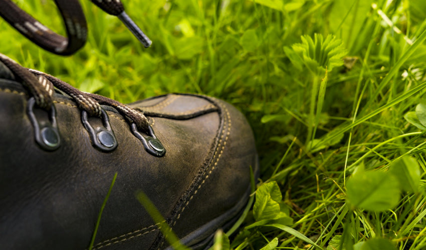 Close up view of the side of a conventional hiking boot surrounded by grass