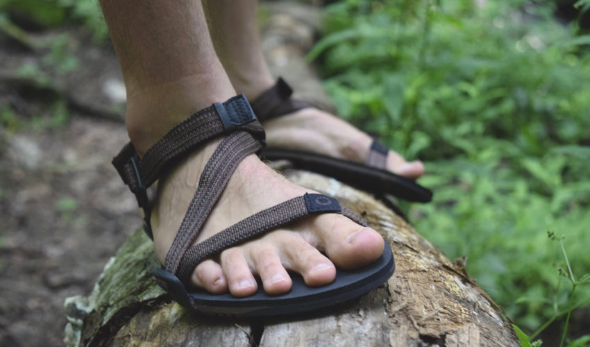 Male hiker wearing Xero Z-Trail Brown sports sandals standing on a log