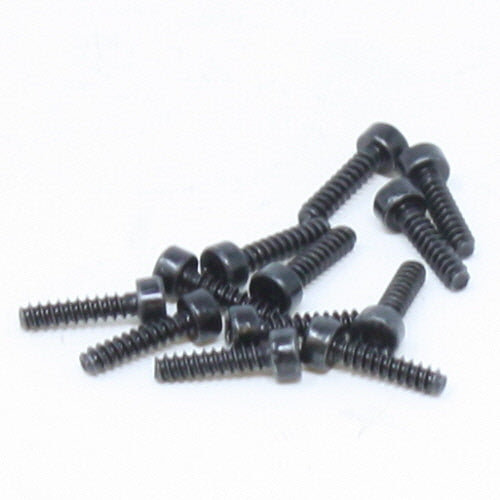 Hexagon Cylindrical Head Screw 2*8 12P 13834
