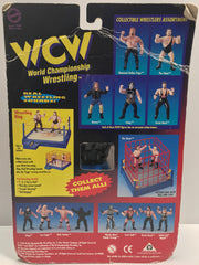TAS037911 - 1998 OSFT WCW Power Punch - Raven
