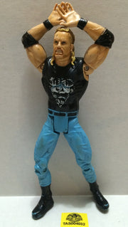 (TAS004032) - WWF WWE WCW Jakks LJN Wrestling Figure - Diamond Dallas Page DDP, , Action Figure, JAKKS Pacific, The Angry Spider Vintage Toys & Collectibles Store