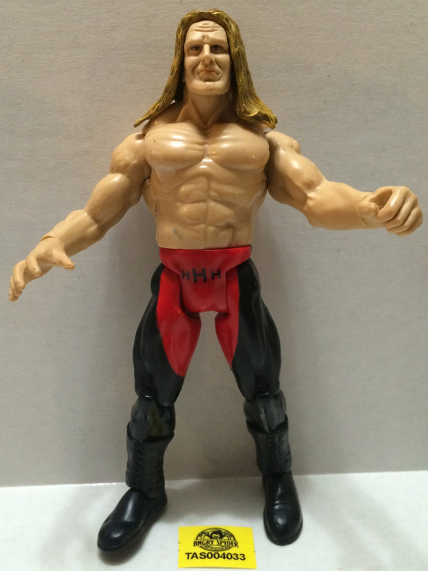 (TAS004033) - WWF WWE WCW Jakks LJN Wrestling Figure - Triple H (HHH), , Action Figure, JAKKS Pacific, The Angry Spider Vintage Toys & Collectibles Store