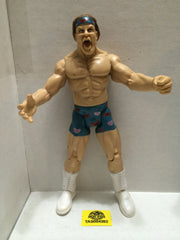 (TAS004262) - WWF WWE WCW LJN Jakks Wrestling Figure - B.A. Billy Gunn DX, , Action Figure, JAKKS Pacific, The Angry Spider Vintage Toys & Collectibles Store