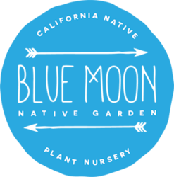 Blue Moon Native Garden