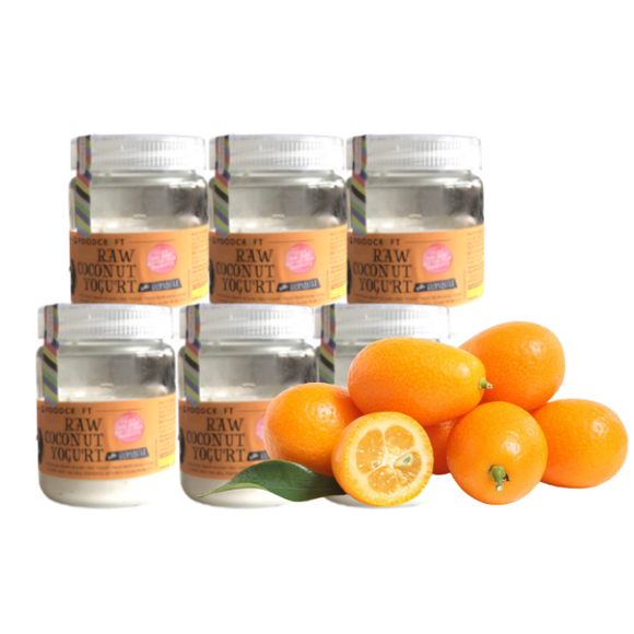 Vegan Soy-Free Coconut Yogurt, Kumquat - 140g Set of 6 - FoodCraft Online Store